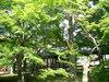kyoto2005_01