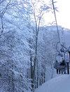 ski_nekoma